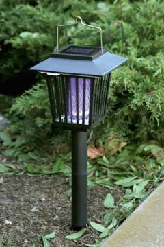AZM Solar  Insect  Killer With Light