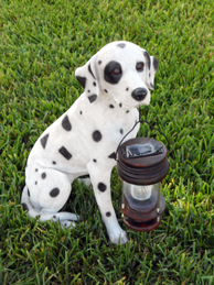 Dalmatian Dog With Lantern Solar Light - CE certified
