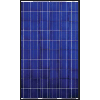 Canadian Solar CS6P-260P 260W Poly BLK/WHT Solar Panel