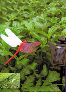 Dancing flickering Pink body Dragonfly Solar Powered Light